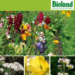 Garten Im Herbst Graben by Waschb 228 R Garten Tipps Pflanzzeit Im Herbst