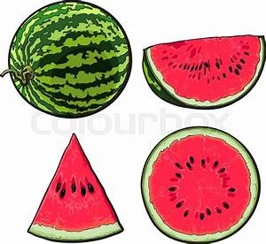 Whole, half, quarter and slice of ripe watermelon, sketch ...