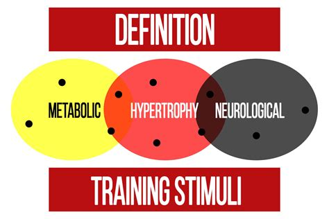 Training Stimuli - What Are They? - N1 Training