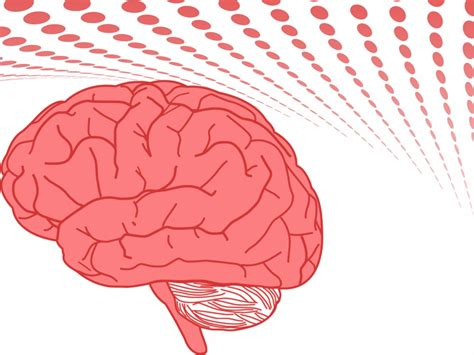 brain powerpoint templates free human brain backgrounds health templates free ppt grounds and powerpoint