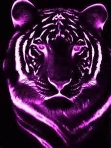 Download Pink Tiger Wallpaper Gallery