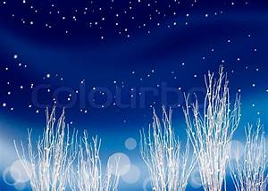 Snow white decoration twigs against dark blue background ...