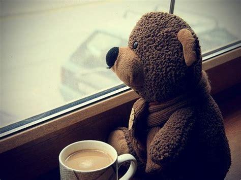 bear coffee cup teddy teddy bear image