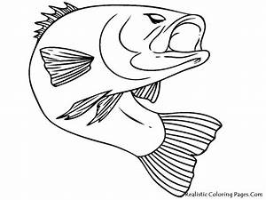 Fish Realistic Coloring Pages | Realistic Coloring Pages