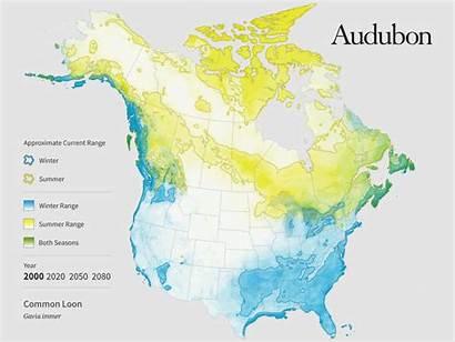 Audubon Climate Bird Map Range Change America