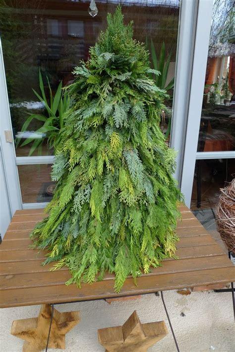 Weihnachtsbaum Aus Zweigen Binden by 63 Besten Tanne Moos Co Zu Weihnachten Bilder Auf