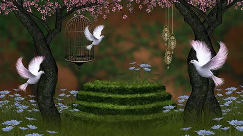 Beautiful 3d Wallpapers For by Beautiful Nature Wallpaper For Desktop In 3d With Pigeons