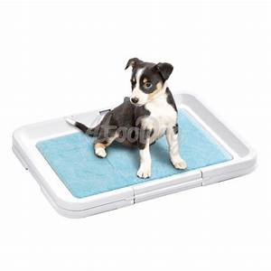 tapis educateur chien ziloofr With tapis educateur chien