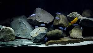 Aquarium Kies Kaufen : r ckwand flu steine oder eigenbau r ckwand ~ Orissabook.com Haus und Dekorationen