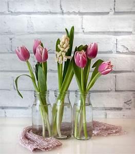 Tulpen In Vase : tulpen in der vase 5 tipps f r eine l ngere tulpenbl te plantura ~ Orissabook.com Haus und Dekorationen