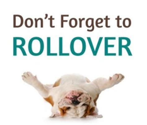 Ira Rollovers Into Gold  Your Best Investment Option. Internet Background Checks Pre Pharmacy Major. Cheap Internet Fax Service Twc Digital Phone. Animal Science Degree Online. Accurate Online Psychic Readings. List Of Nursing Programs Mobile App Designers. Alabama Immigration Lawyer Scm Software Demo. Latrobe Health And Rehabilitation Center. Network Security Architecture