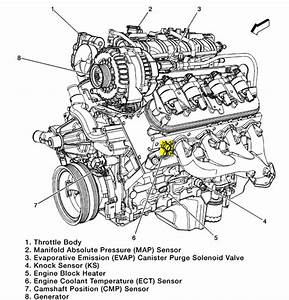 Chevy Avalanche 5 3 Engine Diagram  U2022 Downloaddescargar Com
