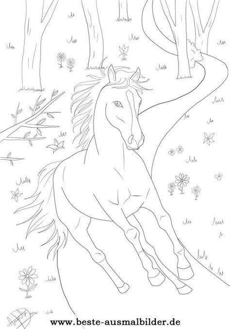 ausmalbild pferd wald malen ausmalbilder ausmalbilder