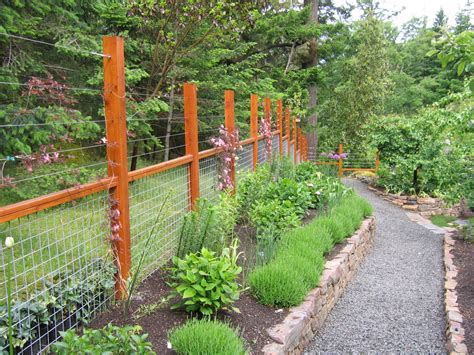 deer fence design ideas deer fence designs exterior contemporary with fence gravel stepping stones beeyoutifullife com