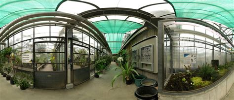 Botanischer Garten Uni Bochum by Ruhr Universit 228 T Bochum Bochum Scientific Collections