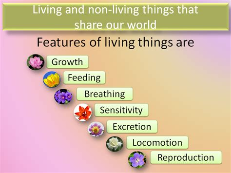 living and non living things that our world teacha