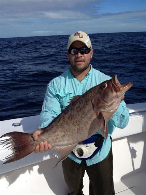scamp grouper fishing florida keys