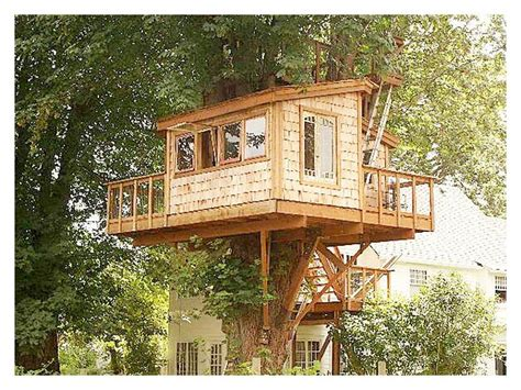 House Design Plans by New Tree House Designs And Plans Free New Home Plans Design