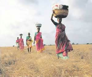 Villagers give land to exorcise Nandigram ghost - Indian ...