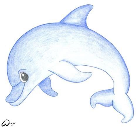 baby dolphin  woxys  deviantart