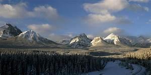 Le Canada Sanctuarise Une Vaste Fort De La Cte Pacifique