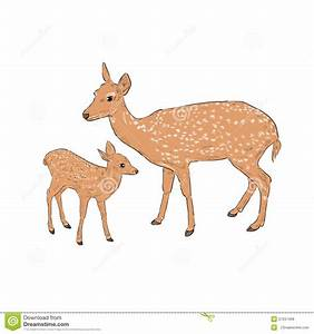 Female deer with a fawn stock vector. Illustration of ...