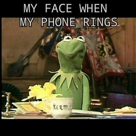 Kermit Meme My Face When - 682 best actually i am an introvert images on pinterest introvert lyrics and myers briggs intp