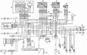 2009 Aprilia Scarabeo 500 Wiring Diagram