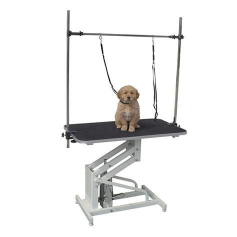 PISCES LARGE PROFESSIONAL HYDRAULIC DOG GROOMING PARLOUR TABLE WITH ARM & LEASH eBay