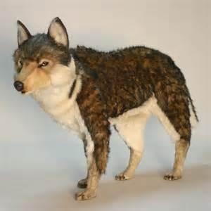 Real Life Werewolf Transformation