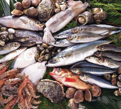seafood stock photo colourbox