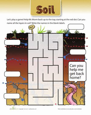 soil maze worksheet education