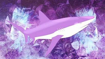Shark Dream Meaning Sharks Dreams Dictionary Auntyflo