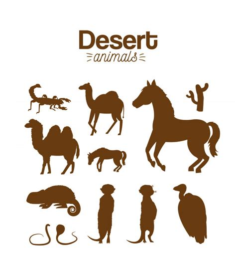 desert animals hand drawing cartoon vector premium