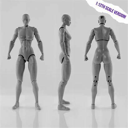 Tall Figure Female Action Blank Inch Bodies