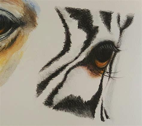 drawing  zebra eye  watercolor pencils   draw