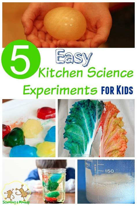 Kitchen Science Fair Experiments by 3952 Best Images About Science Lapbooks Activities On
