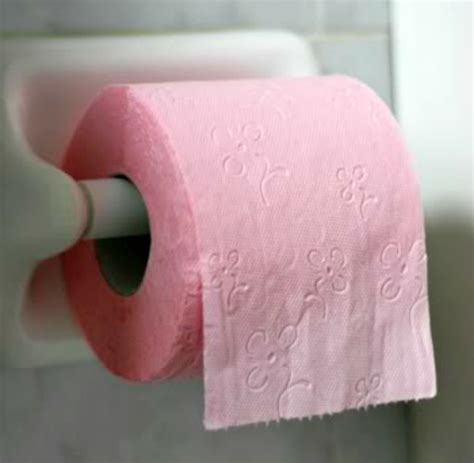 Colored Bathroom Tissue by Toilet Paper Rolls Getting Smaller As Prices Rise Www
