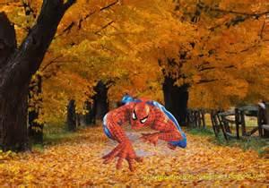 Free Desktop Fall Screensaver Autumn Trees