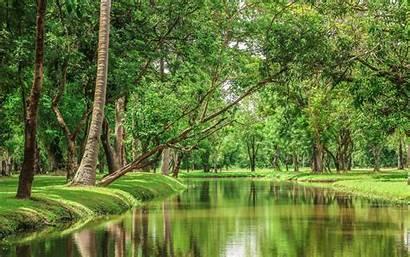 Forest Nature River Superiorwallpapers Wallpapersafari Rate