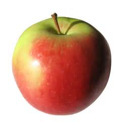 Apple | Free Images at Clker.com - vector clip art online, royalty ...