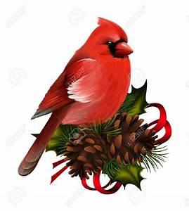 Top 78 Cardinal Clip Art - Free Clipart Spot