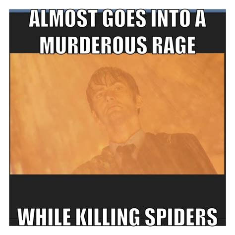 Killing Spiders Meme - 52 best all things doctor who images on pinterest