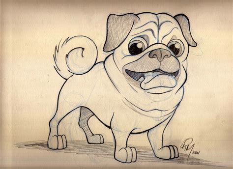 Pug Full Hd Wallpaper And Background Image 3508x2552