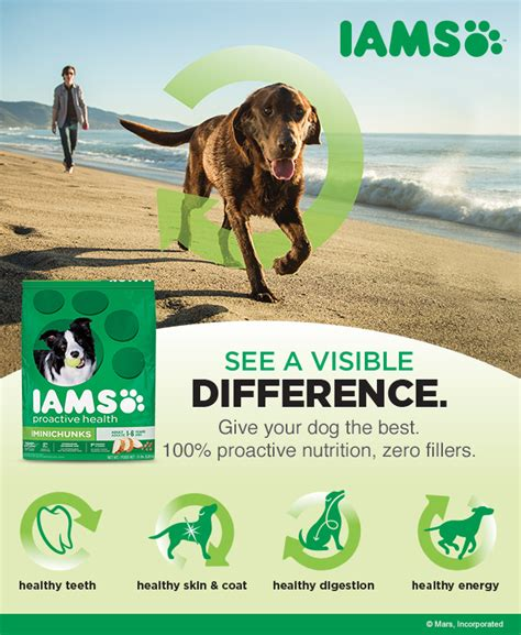 ways  spoil  dog   iams travel bowl