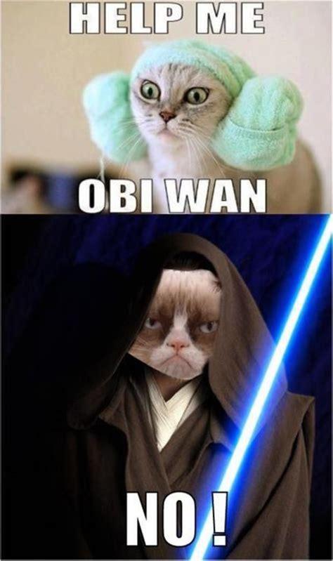 No Meme Grumpy Cat - grumpy cat star wars help me obi wan no cats grumpy cat pinterest light saber