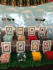 9 Awesome Minecraft Party Activities Catch My Party