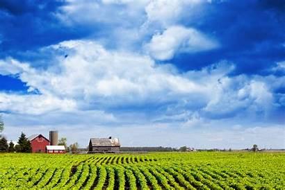 Land Farm Field Agriculture Michigan Usda Loan