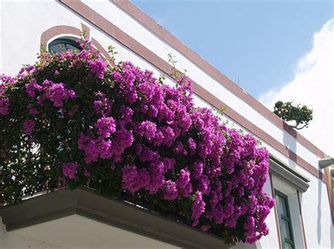 Fantastic Balcony Garden Ideas