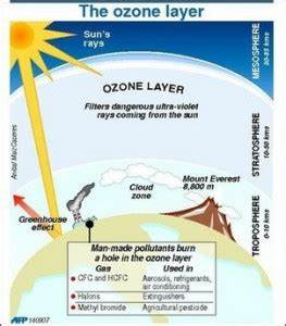 Blindness Essay Essay On Ozone Layer In  Words Into The Wild Essay also Kite Runner Essay Questions Essay On Ozone Layer A Funny Incident Essay Essay On Ozone Layer In  In Cold Blood Essays